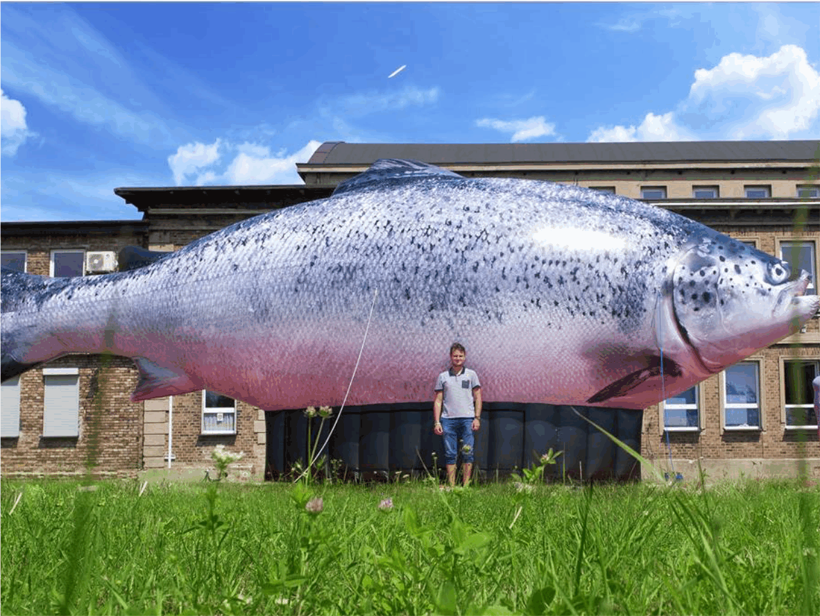 aufblasbare Fische
